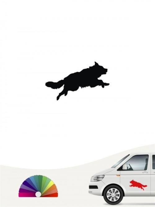 Hunde-Autoaufkleber Border Collie 1b Mini von Anfalas.de