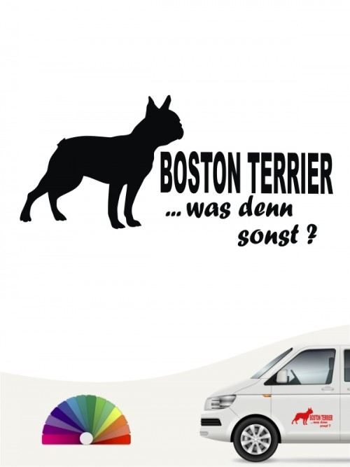 Was denn sonst Boston Terrier Autoaufkleber anfalas.de