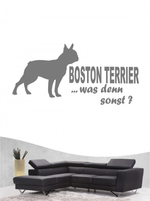Boston Terrier 7 - Wandtattoo