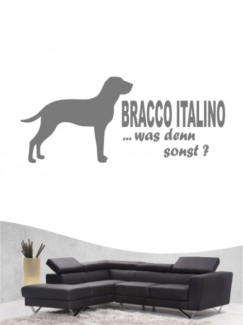 Bracco Italiano 7 - Wandtattoo