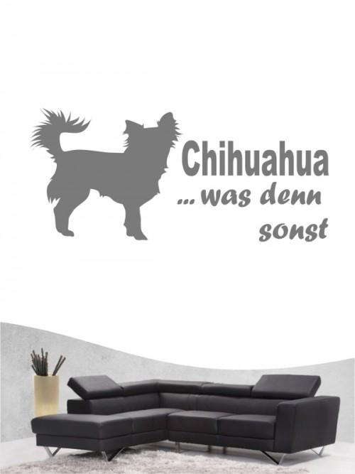 Chihuahua 7 Wandtattoo