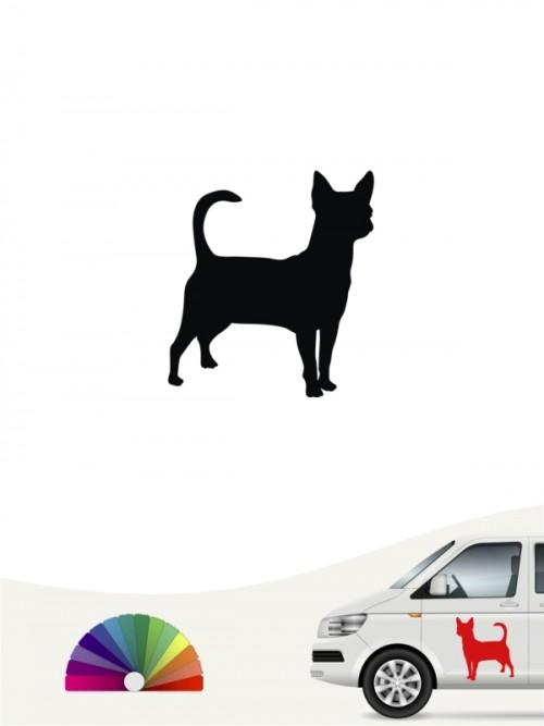Chihuahua Autoaufkleber anfalas.de