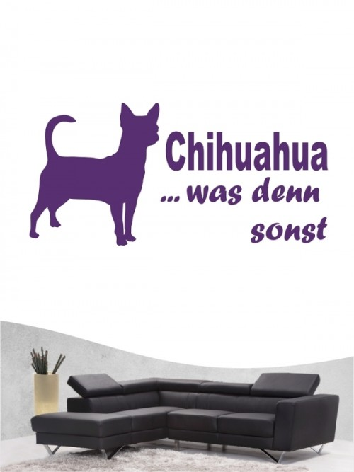 Chihuahua Kurzhaar 7 Wandtattoo