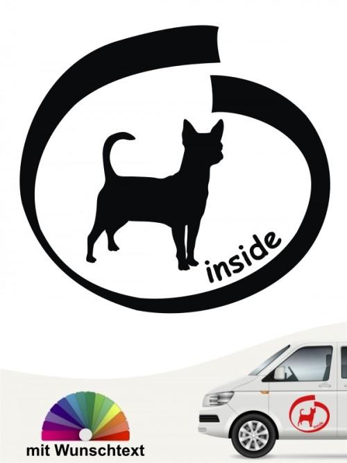 Chihuahua Kurzhaar inside Autoaufkleber anfalas.de