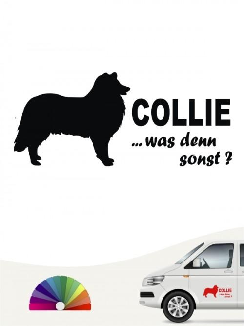 Collie was denn sonst Hundeaufkleber anfalas.de