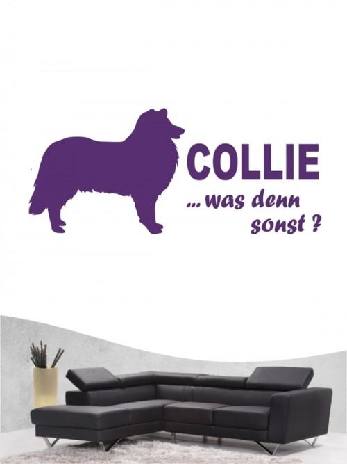 Collie 7 Wandtattoo