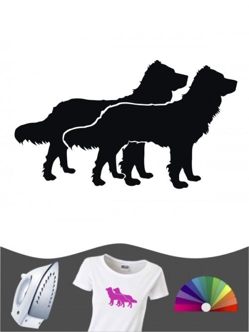 Deutscher Wachtelhund 2 Bügelbild