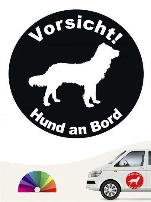 Deutscher Wachtelhund Aufkleber von anfalas.de