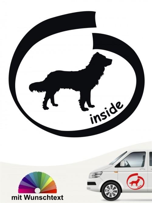 Deutscher Wachtelhund inside Heckscheibenaufkleber anfalas.de