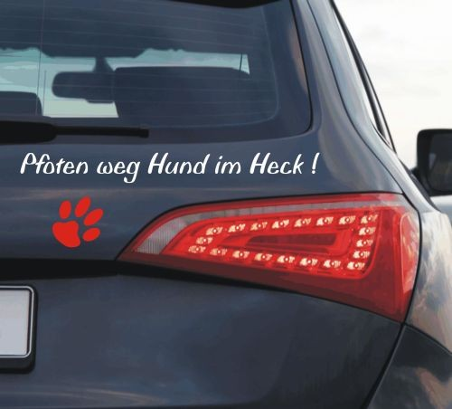 Hundenamen fürs Auto anfalas.de