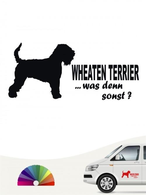 Irish Soft C. W. Terrier was denn sonst Autosticker von anfalas.de