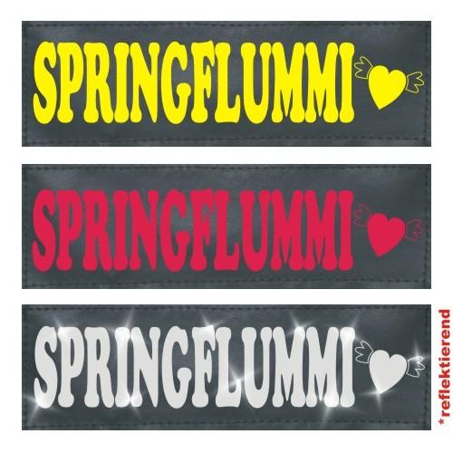 Klettlogo Springflummi Beispielbild  1 Wunschlogo24.de