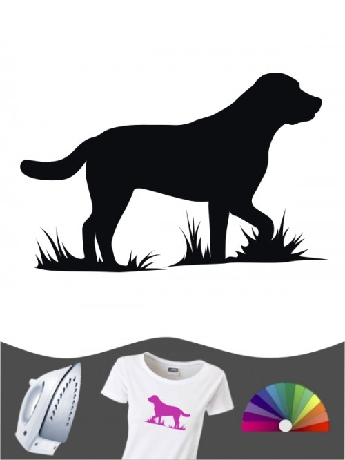Labrador Retriever 1c - Bügelbild