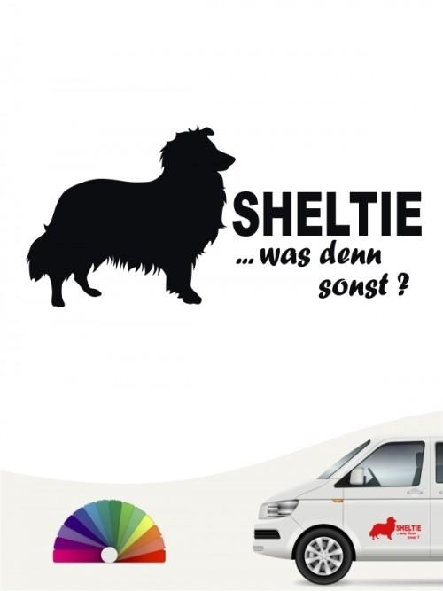 Sheltie was denn sonst Autosticker anfalas.de
