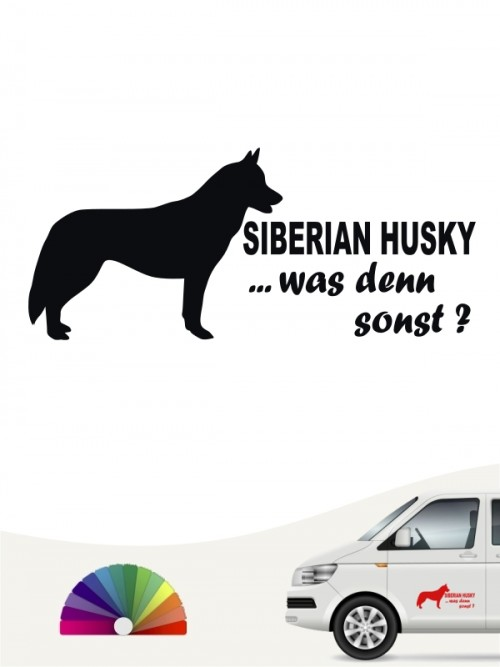 Siberian Husky was denn sonst Autosticker anfalas.de