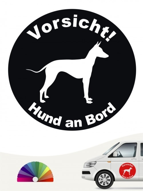 Xoloitzcuintle Aufkleber von anfalas.de