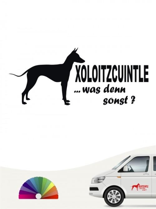 Xoloitzcuintle Autoaufkleber was denn sonst anfalas.de