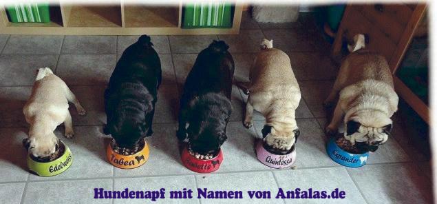 Kundenfotos Hundenapf mit Namen selbst gestalten von Anfalas.de